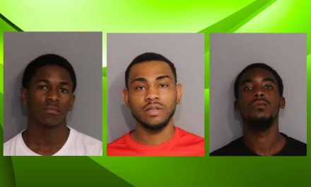 Three men arrested on gun charges after shooting at Osceola house party, hundreds in attendance