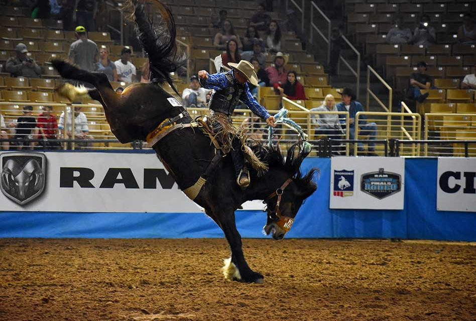 Experience the best of the best in professional rodeo action this weekend at the Silver Spurs Arena