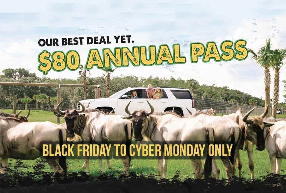 "Wild Florida announces ""WILD"" Black Friday thru Cyber Monday Drive-thru Safari Annual Pass Deal"