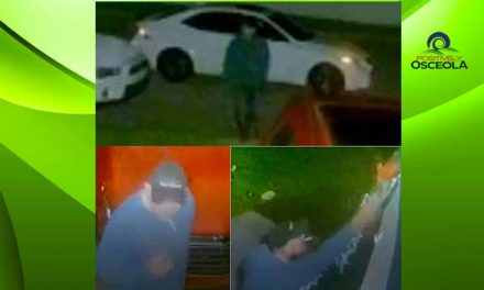 St. Cloud Police looking for man caught on video stealing Christmas lights and wreath from St. Cloud home