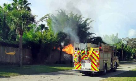 St. Cloud and Osceola Fire Rescue teams work together to extinguish fire at Wild Florida