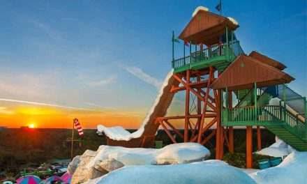 Disney's Blizzard Beach Water Park Set to Reopen, Disney Water Park Tickets Now Available!