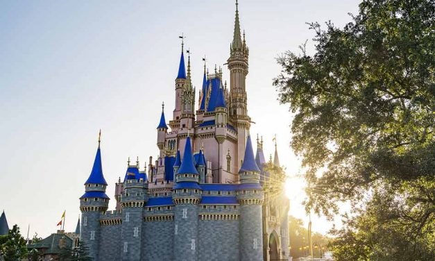 Florida Residents Can Begin 2021 with Special Offer at Walt Disney World Resort Theme Parks