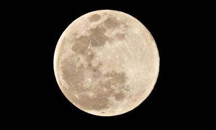 """""""Pink"""" supermoon will be at its largest, brightest tonight"""