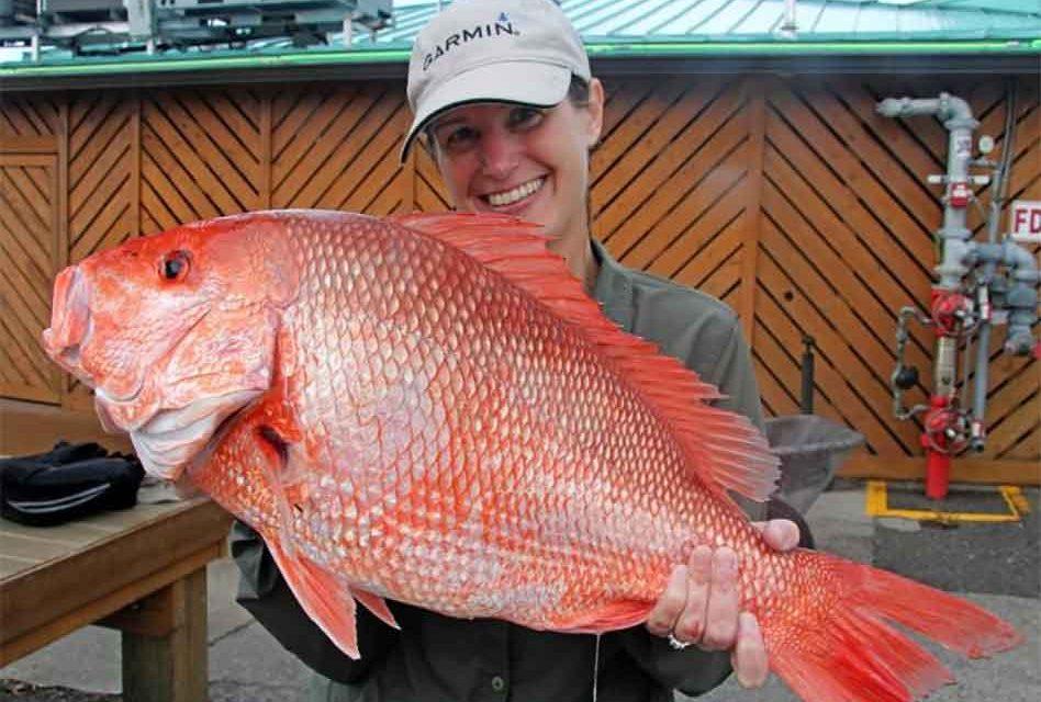 Florida Governor Ron DeSantis announces 2021 Gulf Red Snapper season
