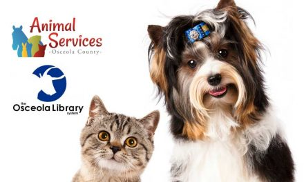 Dog and cat adoption prices are 50% off in Osceola County, just show your Osceola Library Card!