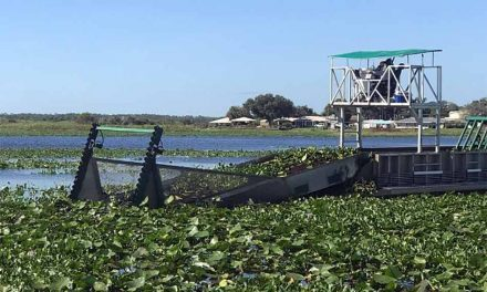 FWC to mechanically remove floating invasive plants in Lake Kissimmee