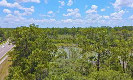 """Osceola County Purchases 40-acres in Four Corners Area for Westside """"Smart Park"""""""