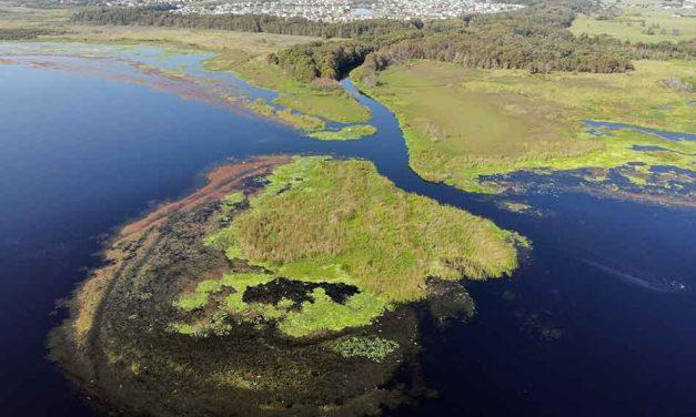 Osceola County to begin removing shoal at mouth of Shingle Creek Monday