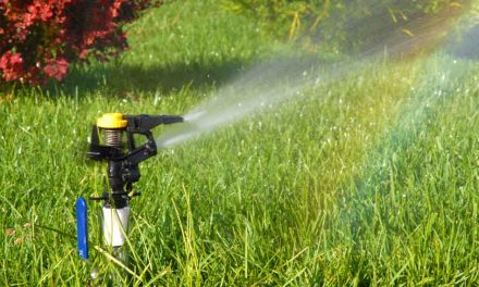 OUC adds rebate for Smart Irrigation Controllers