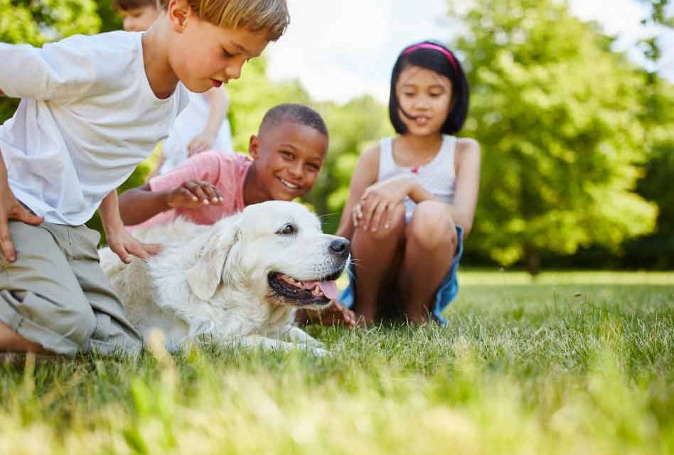 Orlando Health: Get a Pet To Boost Your Child's Immune System