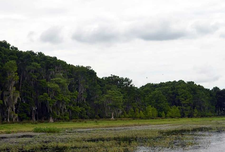 Osceola County announces Cypress Lake/C-35 Shoal Removal Schedule